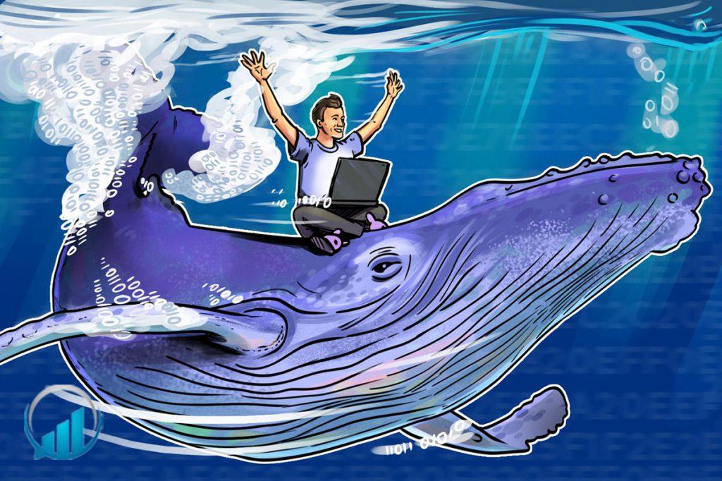 ديوار نهنگ ( Wall Whale)