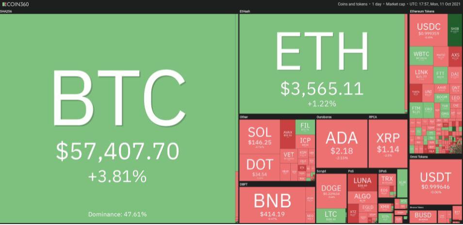 عملکرد روزانه بازار ارزهای دیجیتال