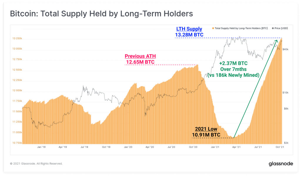 میزان بیت کوین در سرمایه گذاران بلند مدت
